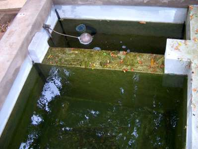 Happy koi happy koi koi keeping done right for Best homemade pond filter media