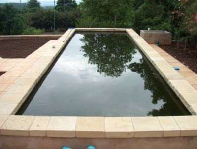 Wooden fish pond for Wooden koi pool